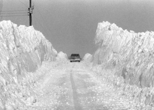 Armstrong Road 1978