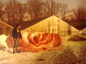"Mark Weaver provided this picture from the Blizzard of 1978. It's a picture of his dad, Mark Weaver, in front of the original Anderson Greenhouses. It's a rose he carved out of the snow. ""It took him a couple days to finish."""