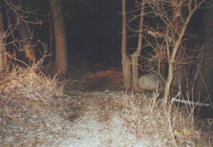 The body of Heather Endicott was found rolled in a carpet in the water of a pond behind Center Center in Warsaw on the evening of March 14, 2002 - more than three months after she was reported missing. (Police evidence photo)