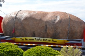 World's largest potato