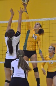 Valley's Caylie Teel goes up and over on Wawasee's front line. Teel had six kills and 20 digs Tuesday night.