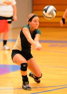 Aly Anderson of Wawasee led all defenders with 43 digs Tuesday night.