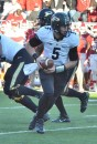 Purdue's Danny Etling rolls back on a play action call early in Saturday's game.