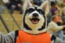 Hamilton Heights mascot, Victor E the Husky, poses for a picture shortly after being caught mocking the photographer.