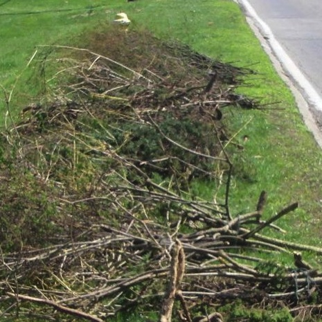 brush good piles