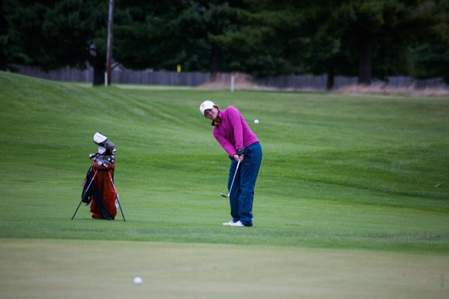 Alexis Manwaring chips on to the green for Warsaw. The senior standout earned medalist honors with a 39 (Photos by Ansel Hygema)