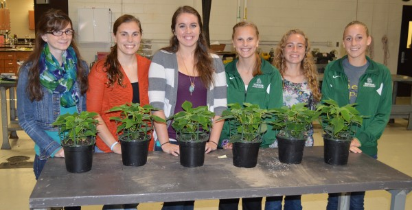 From left are Sophia Nyce, Shelby Swartz, Katie Acton, Molly Swartz, Leeann Estrada and Sarah Harden. They are FFA horticulture judgers for Wawasee High School and will compete nationally Oct. 11 in Kentucky.