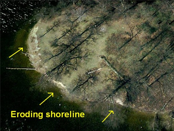 his aerial photo showing the area in which erosion has taken place the windward side of Kline Island in Webster Lake. A project set to begin in the spring aims to stem wind and recreational damage being done to the island's shoreline.