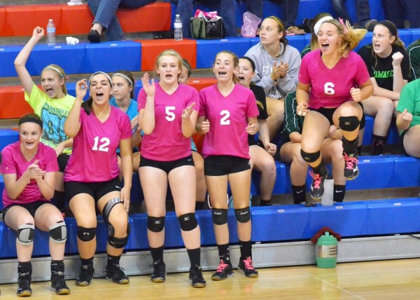 Wawasee's bench goes wild after getting a big point in game three.