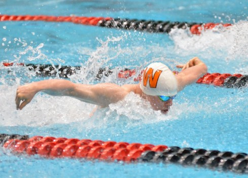 Ethan Cook swims his fly during the 200 medley relay.