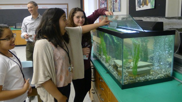 Lakeview students (left to right) Gismely, Evelyn and Alejandra enjoy the opportunity to feed fish like those found in local Indiana lakes.
