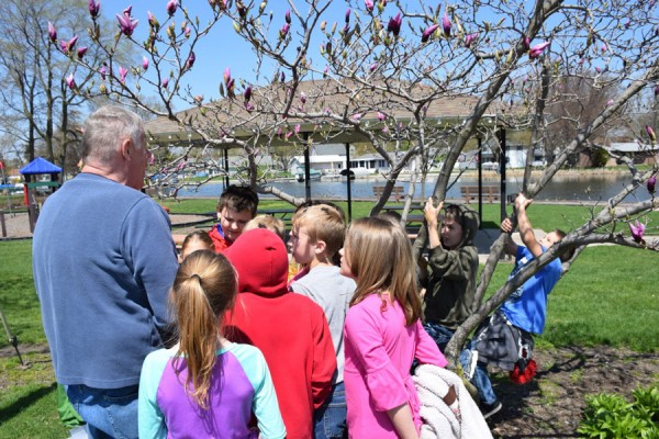 Third-graders spend time with volunteers learning how to identify different trees.