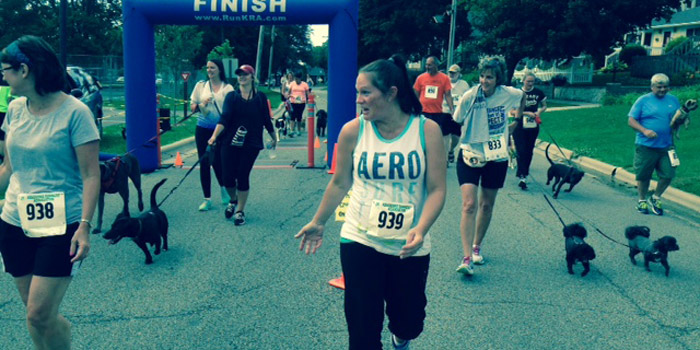 Many dogs were in for a great run. (Photos by Darla McCammon)