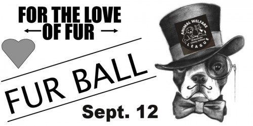 Fur-ball-flyer