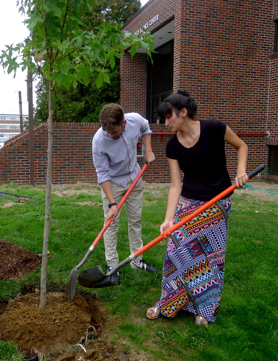 Grace College students, Isaac Mansfield and Kim Ramont, assist in planting a sweet gum tree in front of the Cooley Science Center.