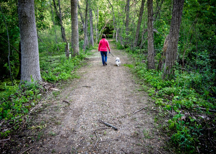 The public is invited to the Levinson-LaBrosse Education Center for the first Falltastic Trail Walk, sponsored by the Wawasee Area Conservancy Foundation.
