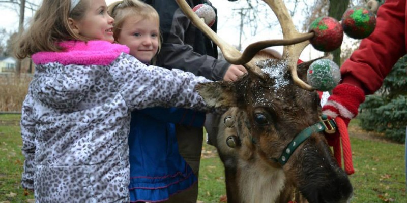Children with reindeer