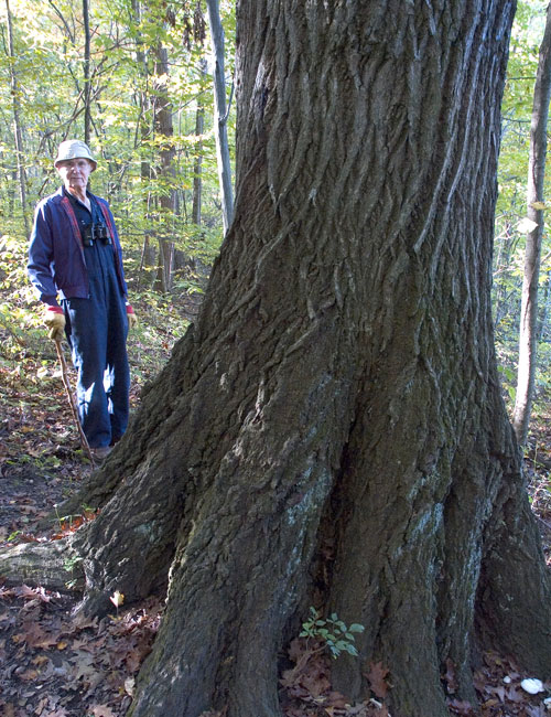 Bob Frantz next to an old red oak in the ACRES preserve.