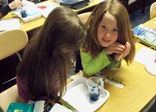 Katie Reichard & Ashlie McAndrews work on an experiment on capillary action in Science class at Triton Elementary School
