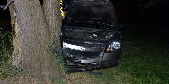 Car into tree at 1106 E. Sheridan St. (Photos by Michelle Reed)