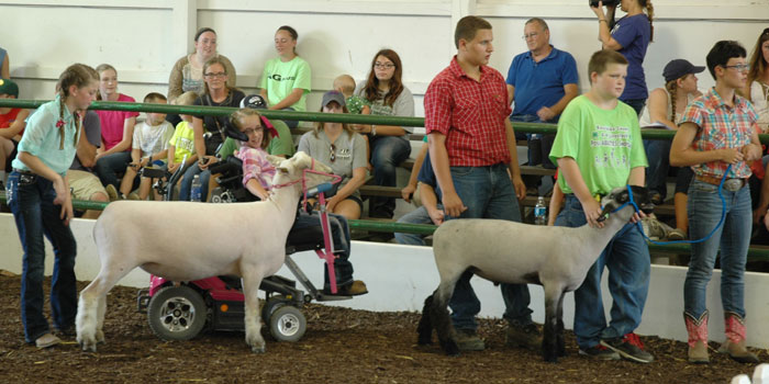 Jordyn Leininger, Skylar Payton, Ryan Zorn, Railly Miller and Elizabeth Zorn. Sheep Percy and Herobrine.