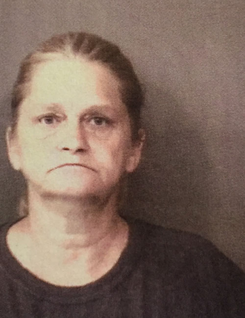 Aug. 15 — Rhonda Jan Truex, 50, 340 E. Levi Lee Rd. 22, Warsaw was booked for fraud. Bond: $5,250 surety and cash.