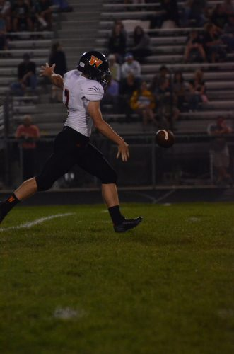 Andrew Mevis punts for the Tigers.
