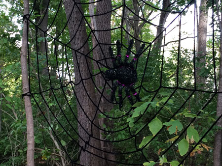 A spooky spider web complete with a giant spider were part of the fall decorations decorating one of the trails at the WACF Falltastic Trail Walk.