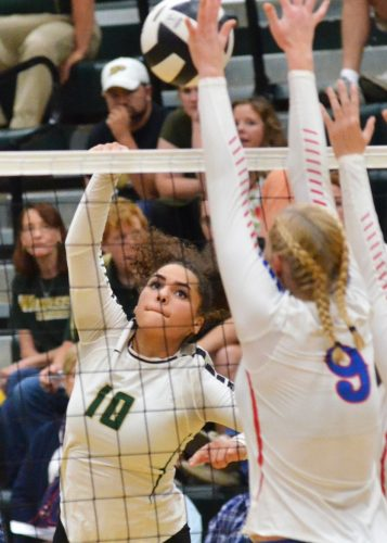 Seaquinn Bright looks for a kill during Tuesday night's game against West Noble. (Photos by Nick Goralczyk)
