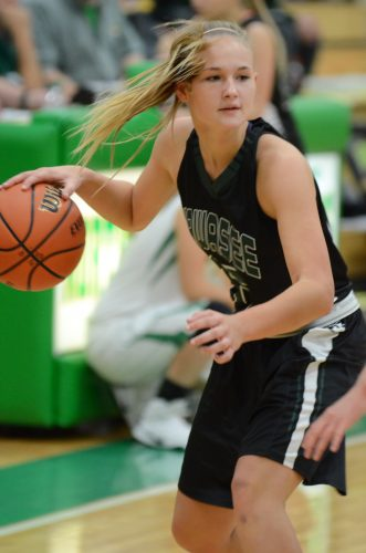 Kabrea Rostochak looks to make a move for Wawasee Tuesday night versus Northridge.