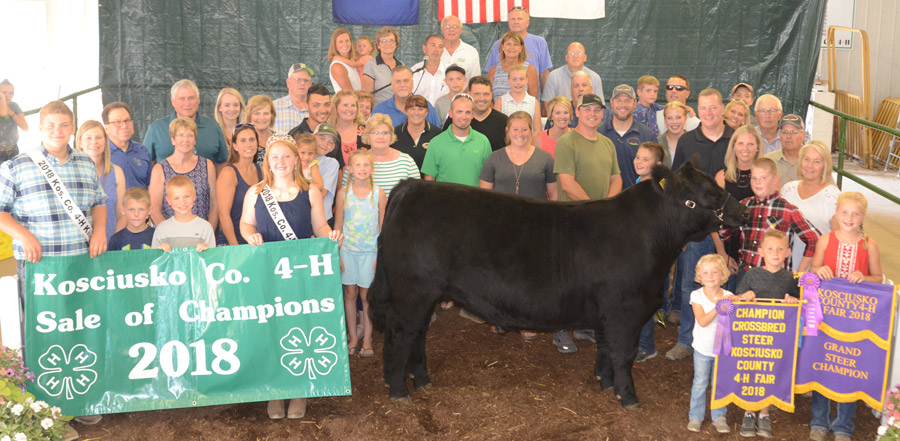 Sale Of Champions Brings Rewards For 4-H'ers – InkFreeNews com